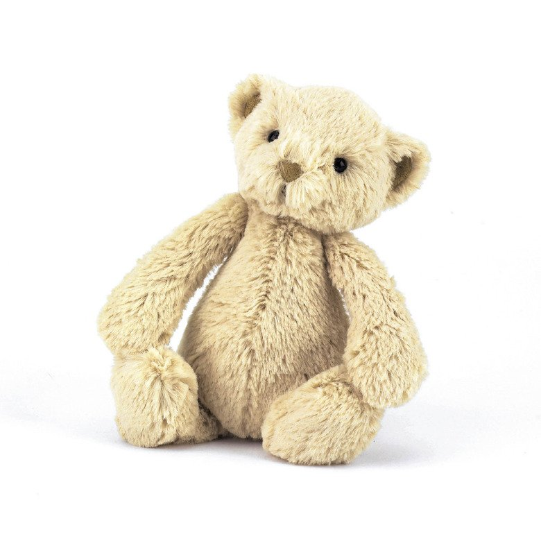 Bashful Teddy Soft Toy