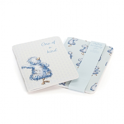 Anything But Ordinary Notebook Set