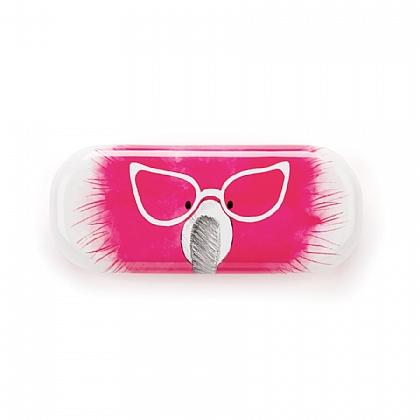 Flaunt Your Feathers Glasses Case