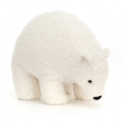Wistful Polar Bear
